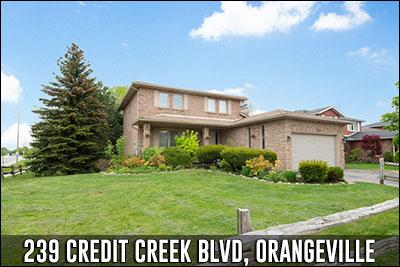 239 Credit Creek Blvd Orangeville Real Estate Listing