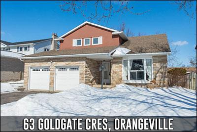 63 Goldgate Cres Orangeville Real Estate Listing