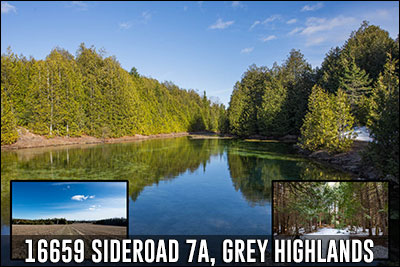 16659 Sideroad 7A Grey Highlands Real Estate Listing